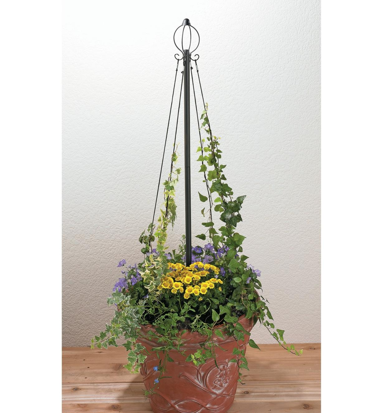 Maypole used in a planter with climbing plants