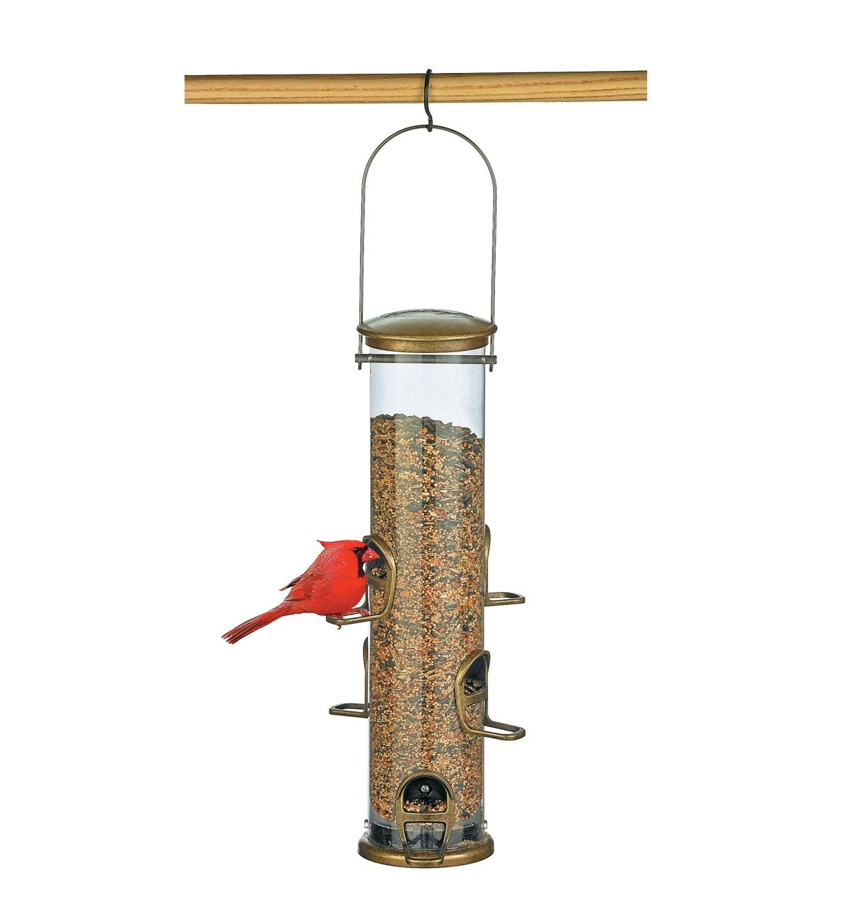 Cardinal perched on large 6-Port Quick-Clean Tube Songbird Feeder filled with seeds