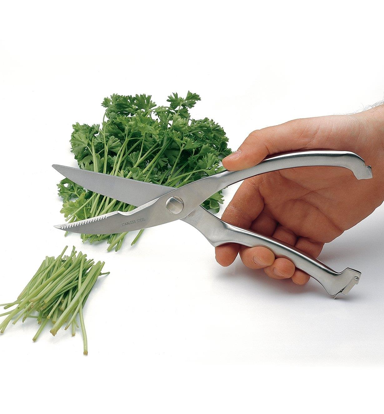 Cutting parsley with Stainless-Steel Kitchen Shears