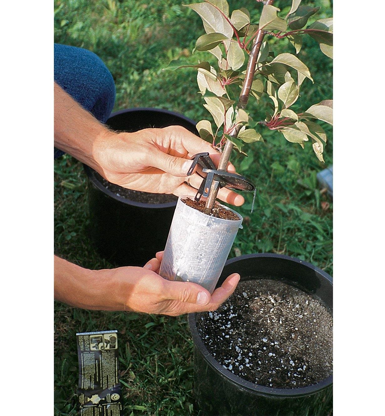 AA642 - Ensemble de 5 pots, stimulateur de racines et seringue