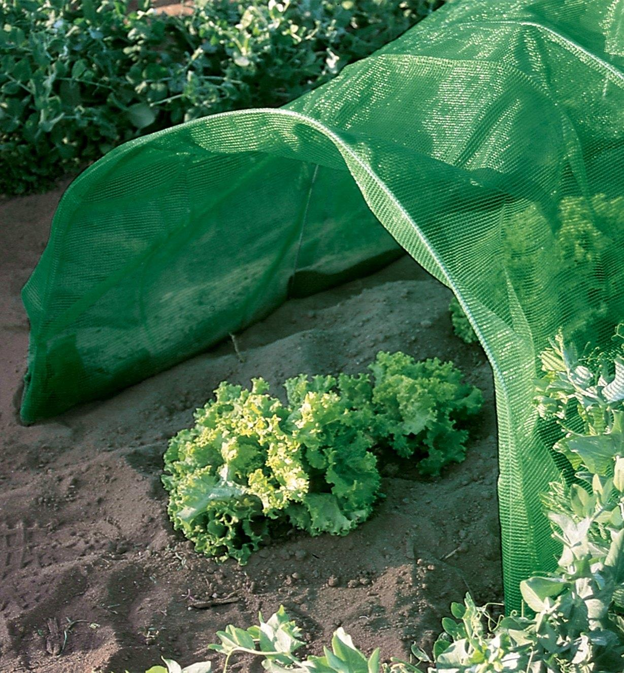 BL612 - Shade Cloth, 2m x 4m (6 1/2' x 13')