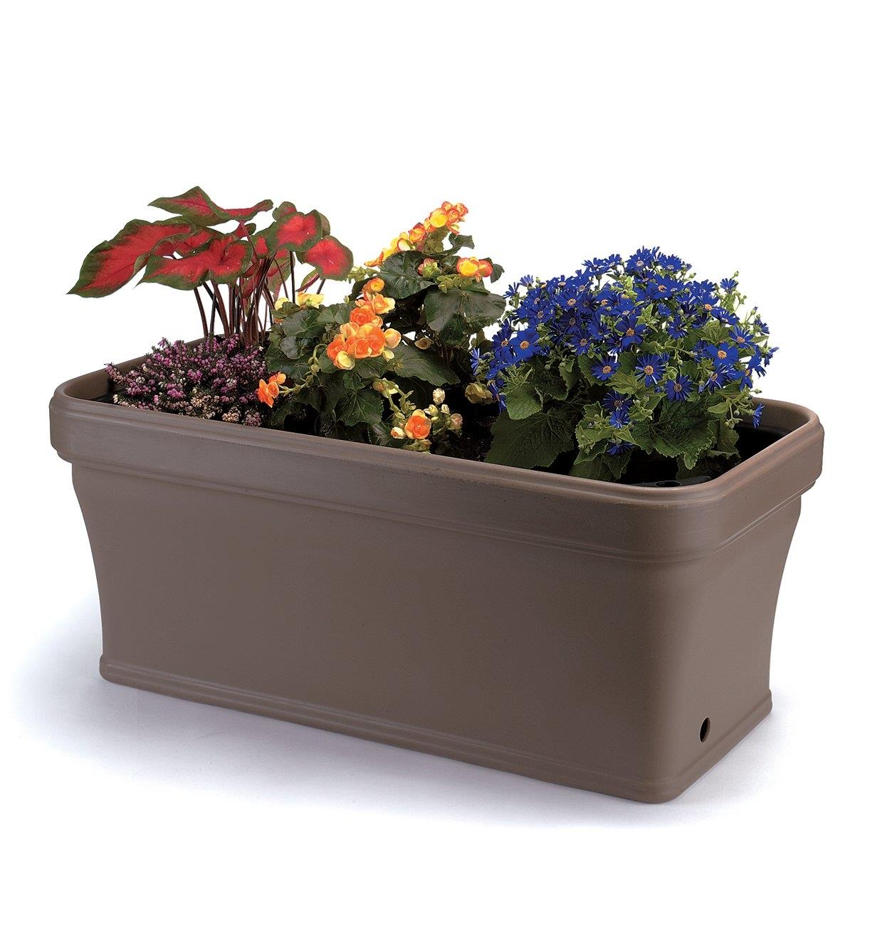 A variety of flowers growing in the Self-Watering Planter