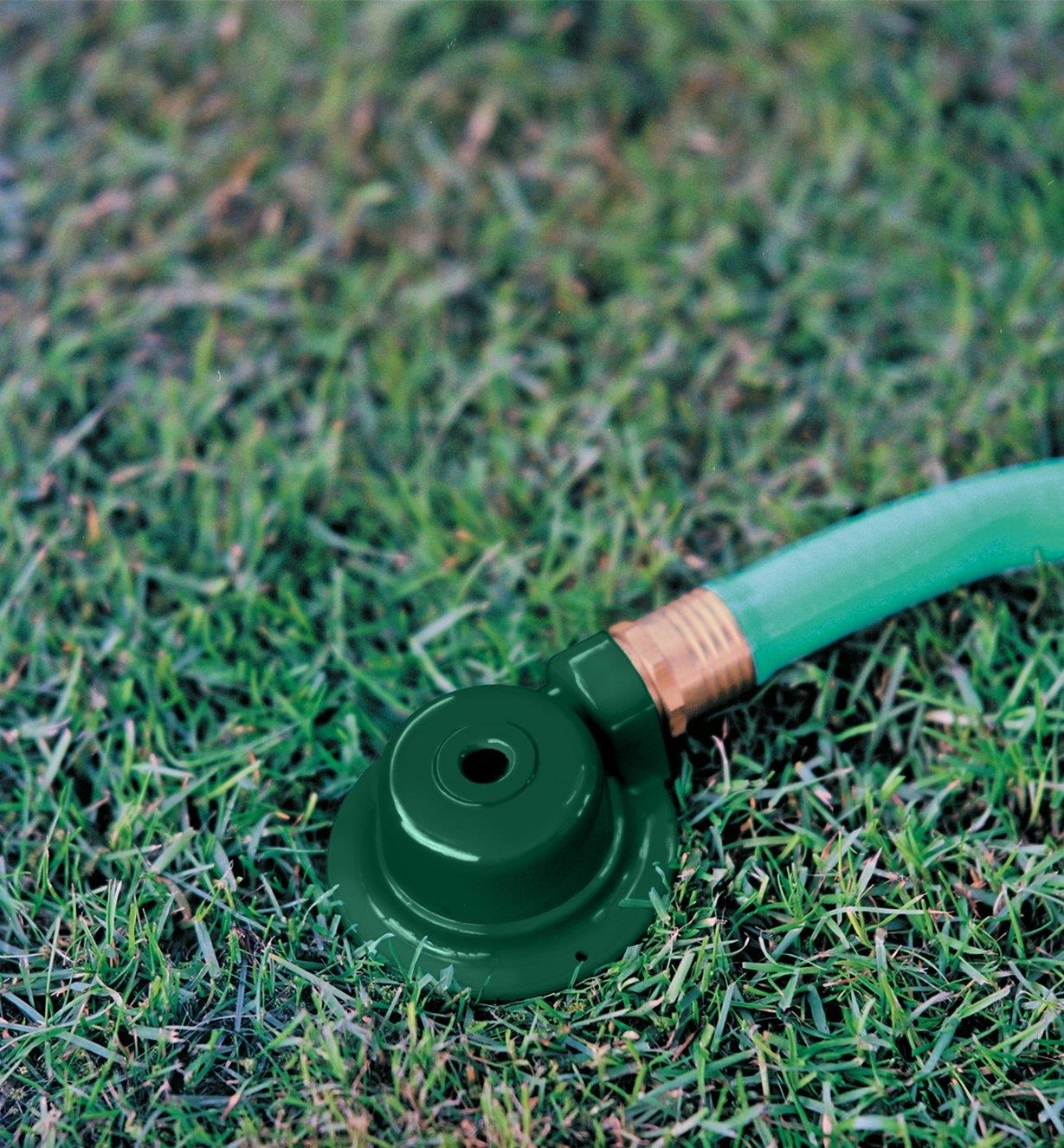 Spot Sprinkler connected to a garden hose