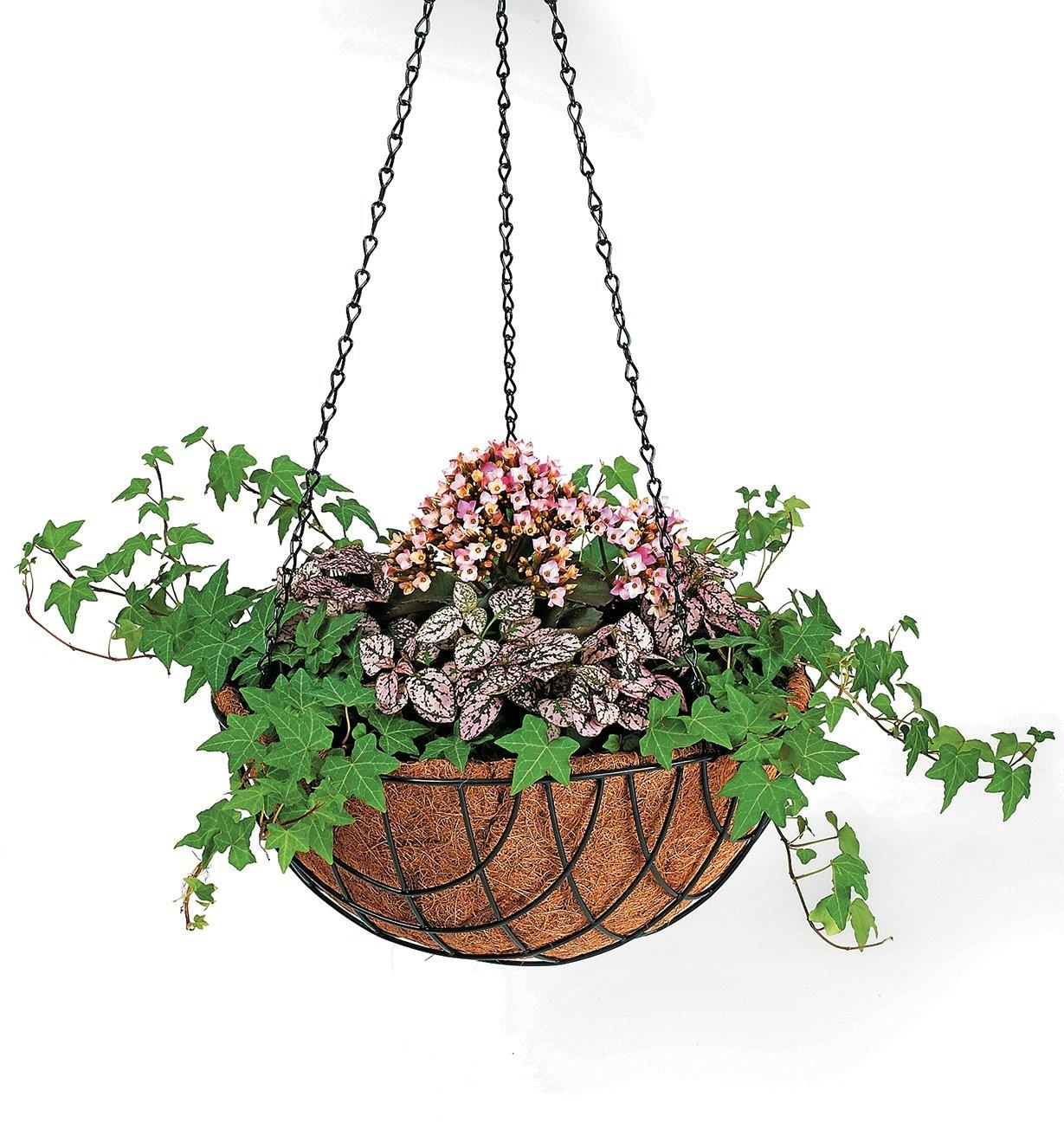 "XB616 - 14"" Hanging Baskets, set of 3"
