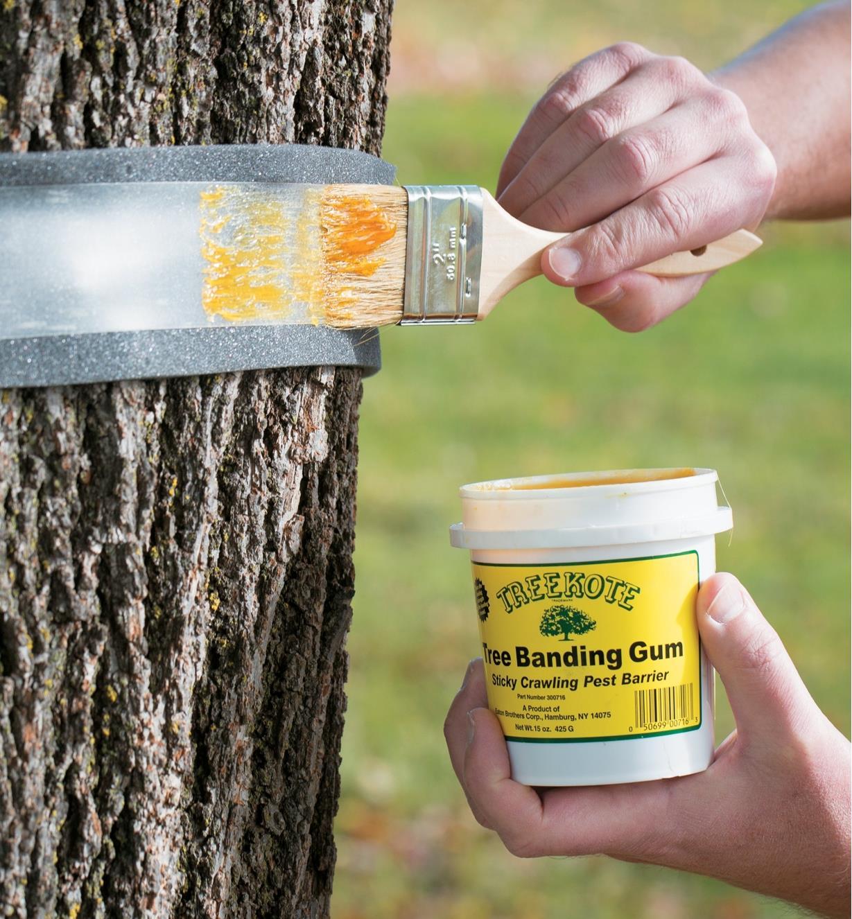 Tree Banding Kit