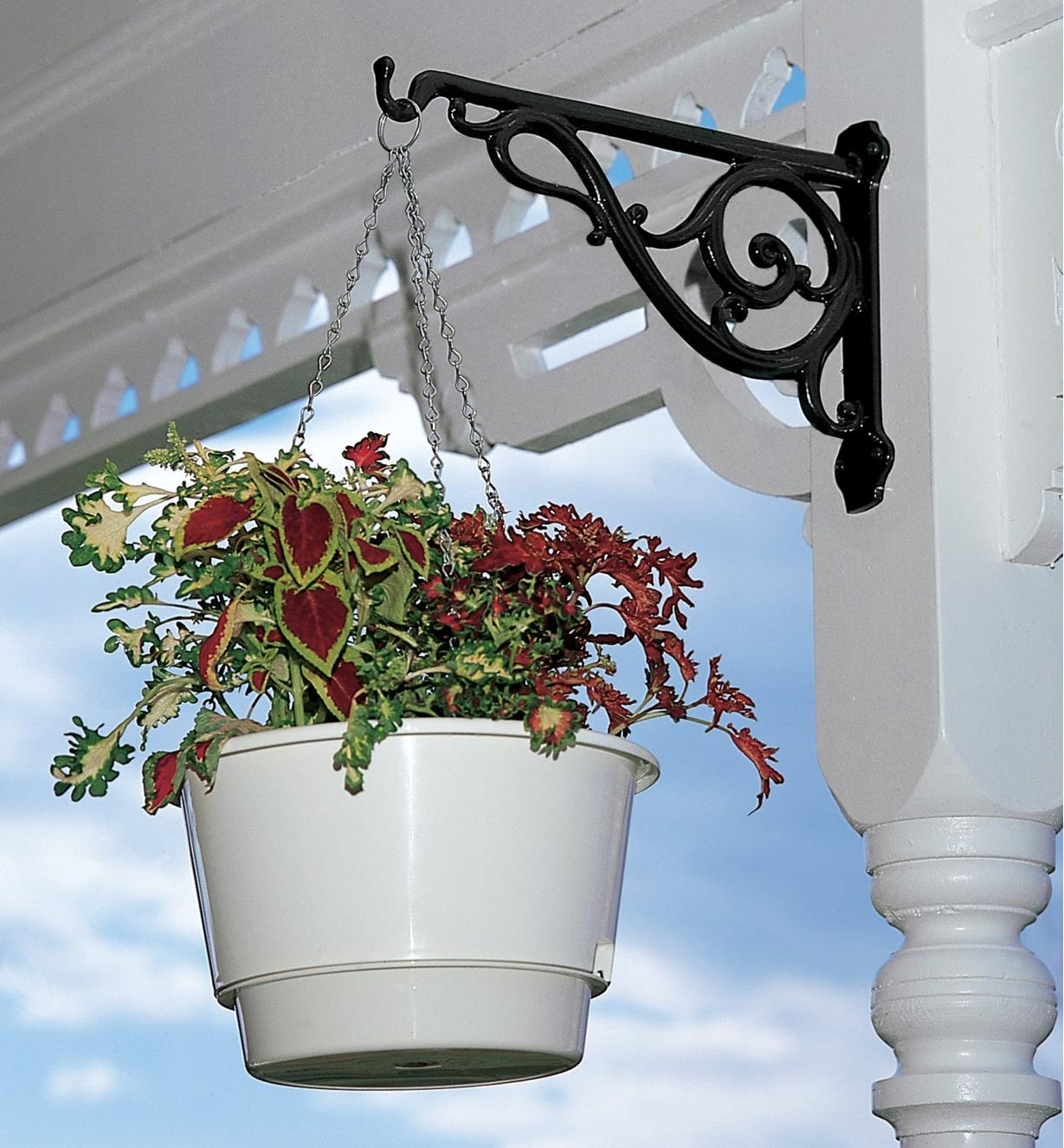 Black Victorian Wall Bracket holding a hanging basket on an outdoor post