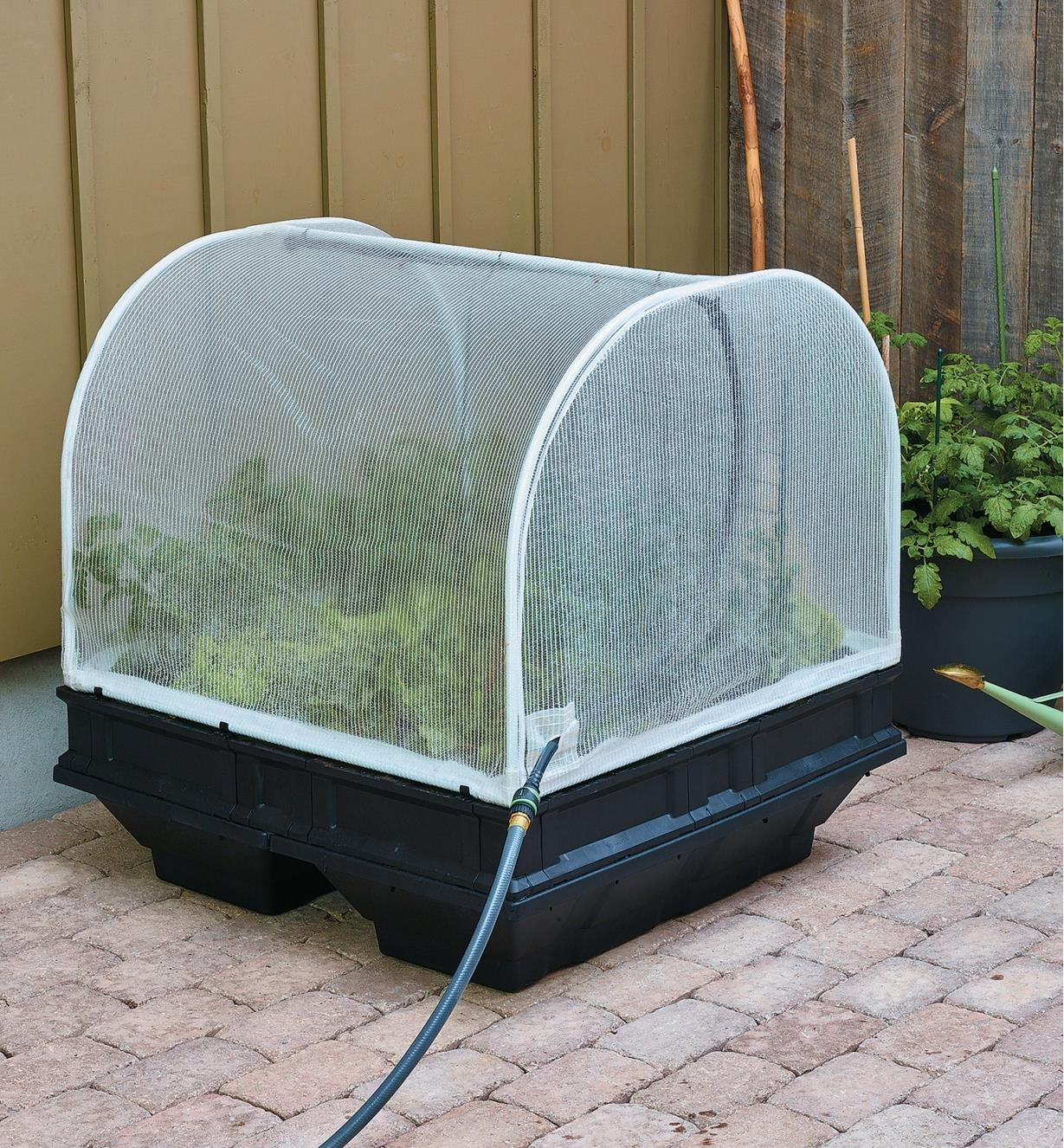 Medium Vegepod Container Garden growing vegetables on a patio