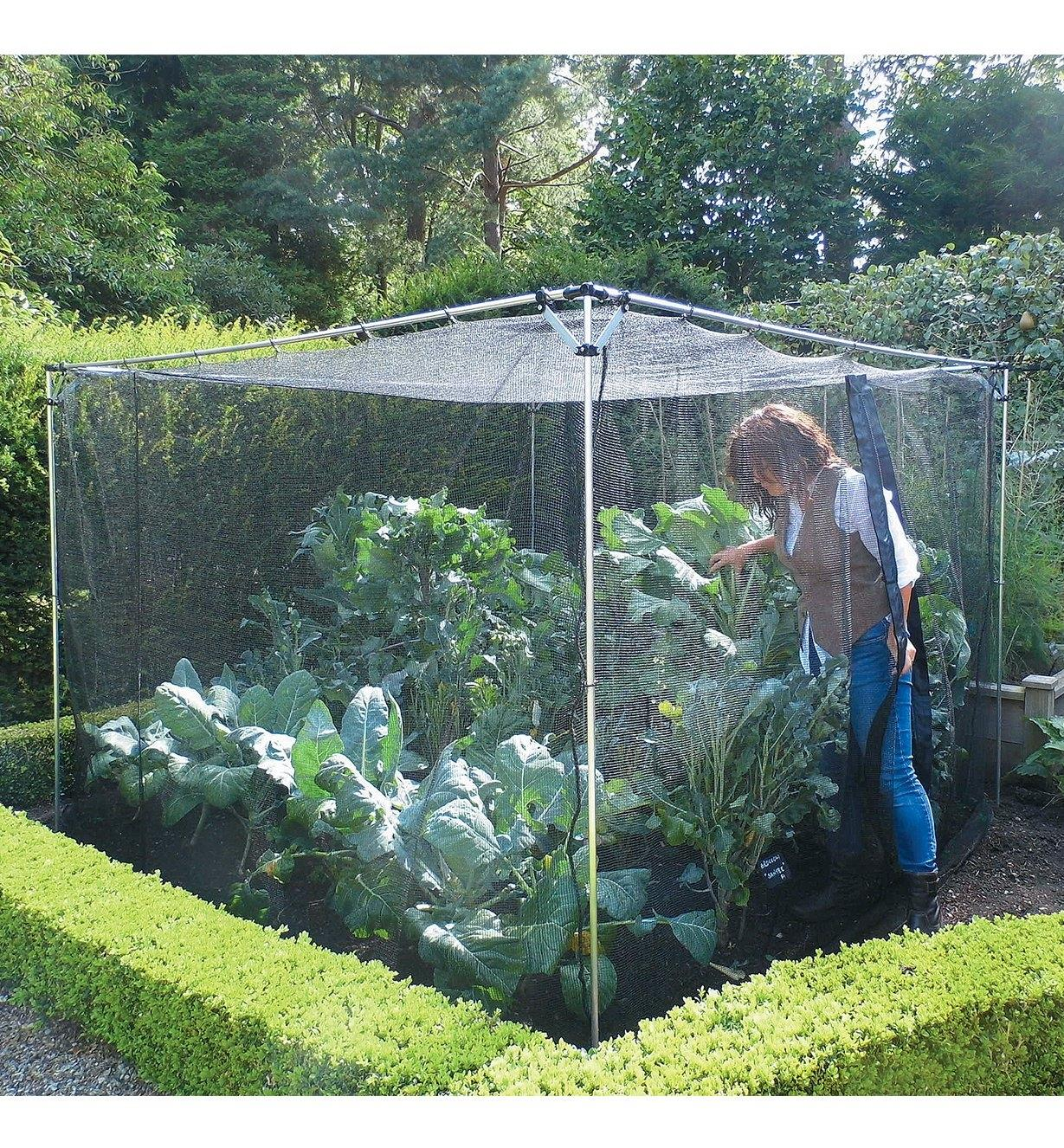 A woman enters the Walk-In Garden Cage, which is filled with plants