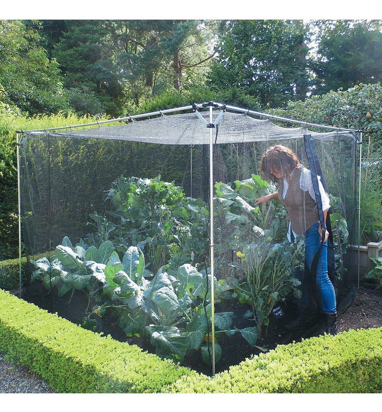 PA235 - Walk-In Garden Cage