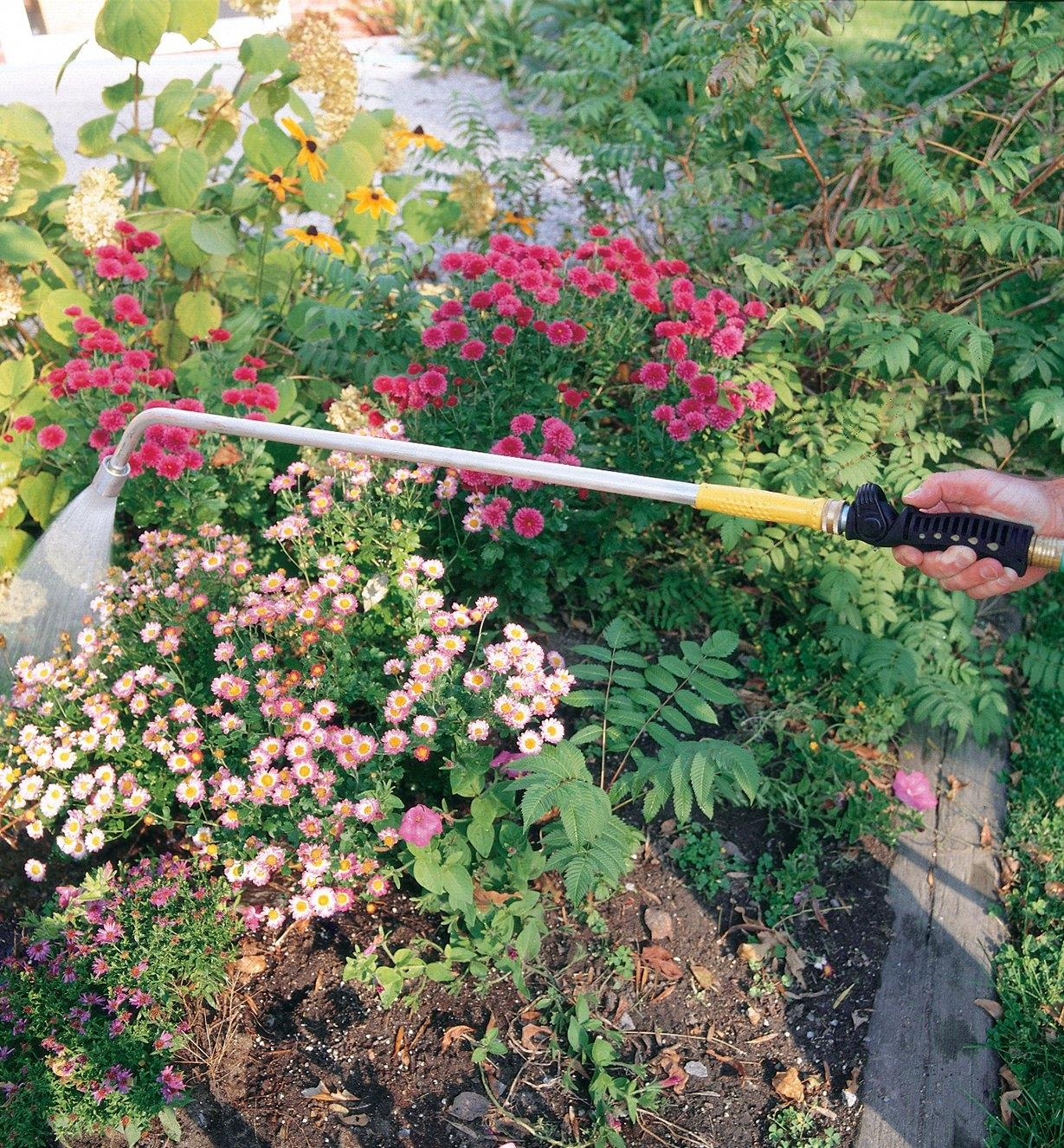 Spraying flowers in a garden with the Water Wand