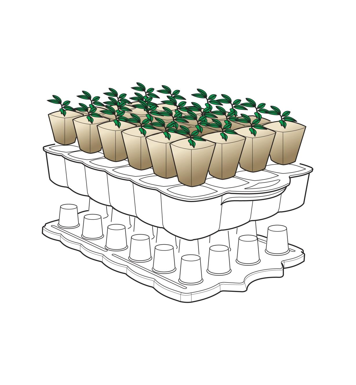 Diagram demonstrating how the growing stand is turned over to eject seedlings from the tray