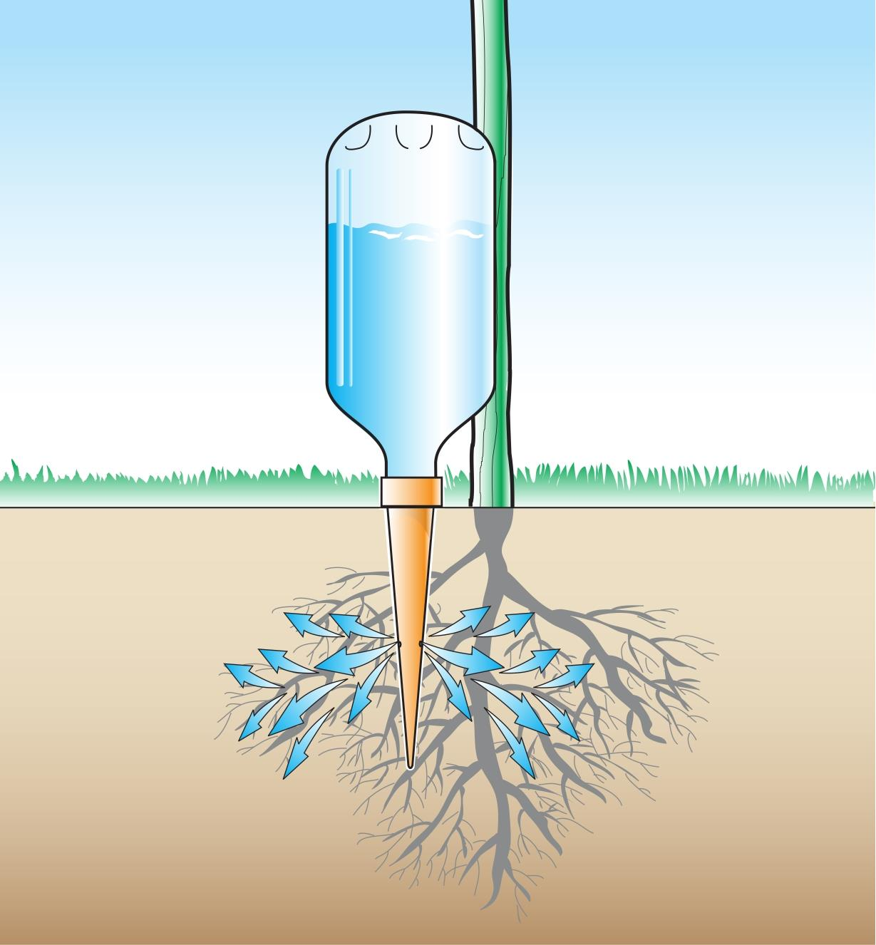 Illustration shows watering spike attached to a bottle, inserted in soil, with arrow indicating water flowing to roots