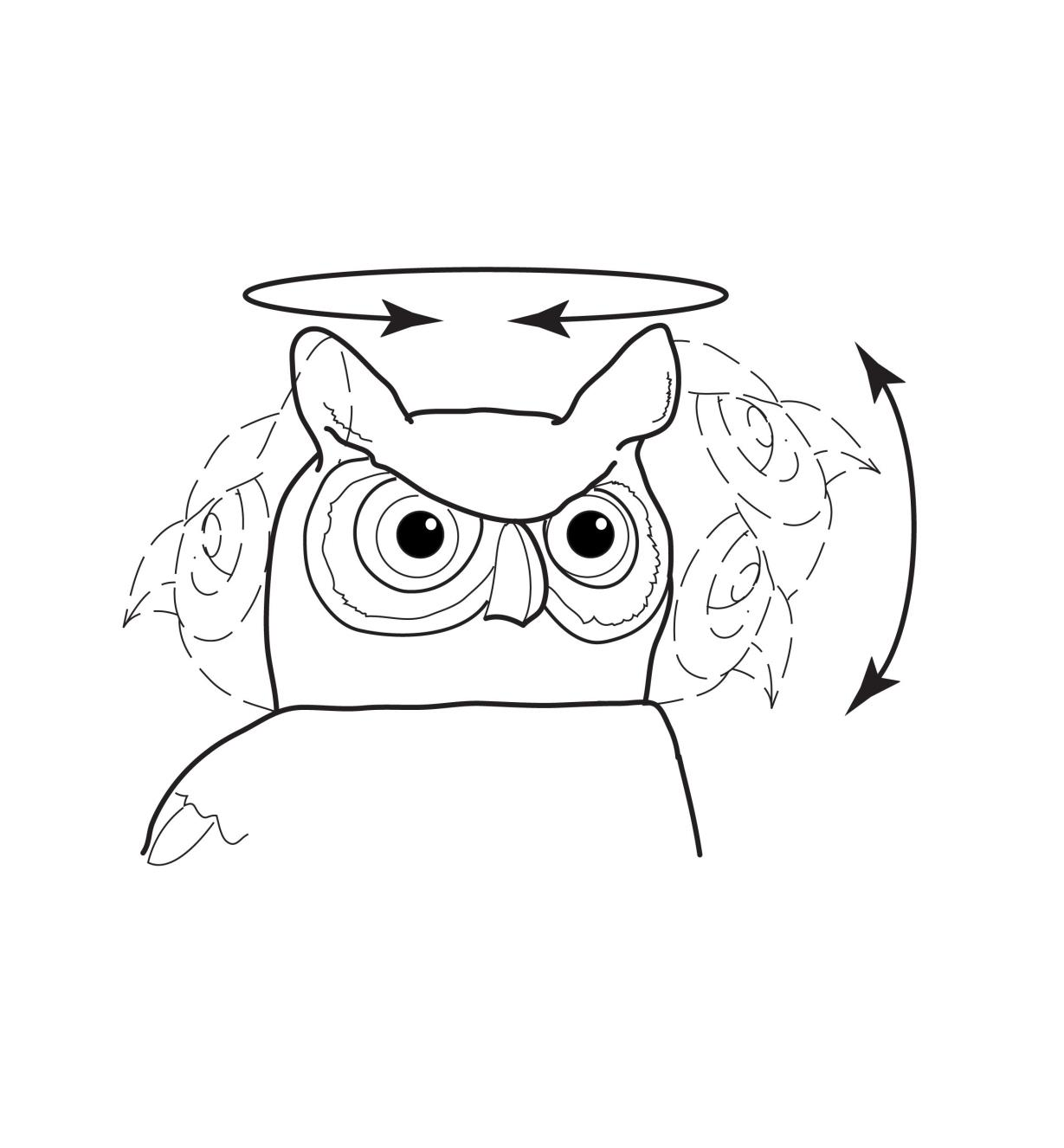 Illustration shows how the owl's head nods and turns