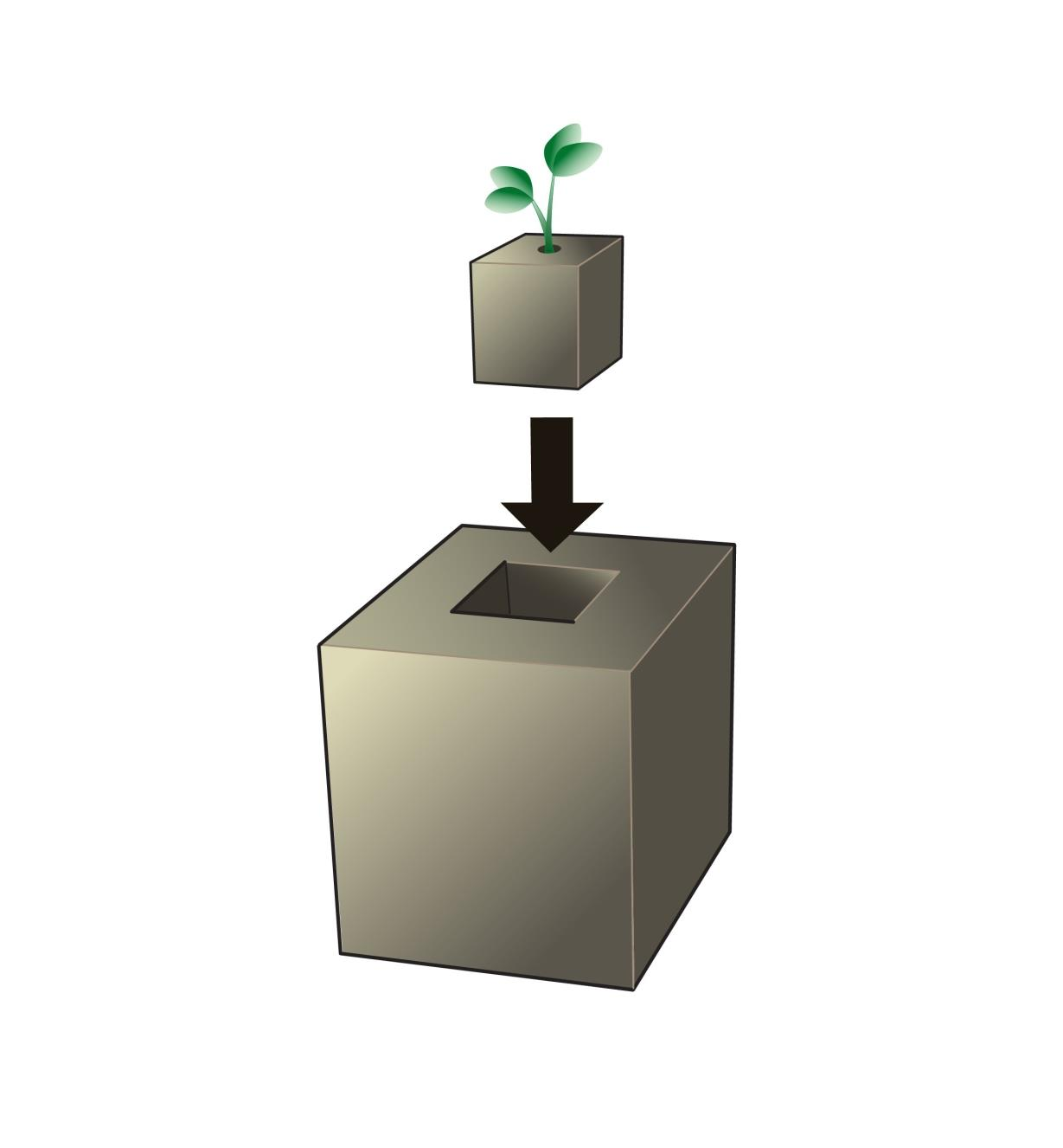 Illustration of seedling in soil cube being transferred into larger soil block made with soil block mold.