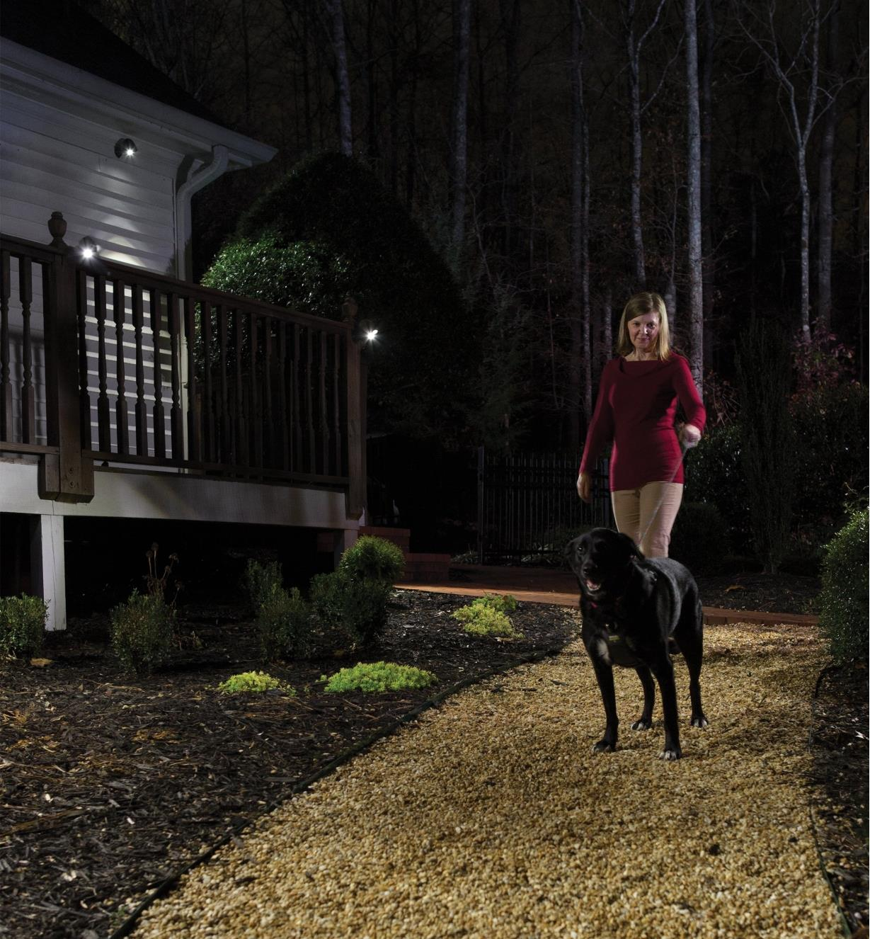 A woman walking a dog at night passes a house lit by a NetBright floodlight