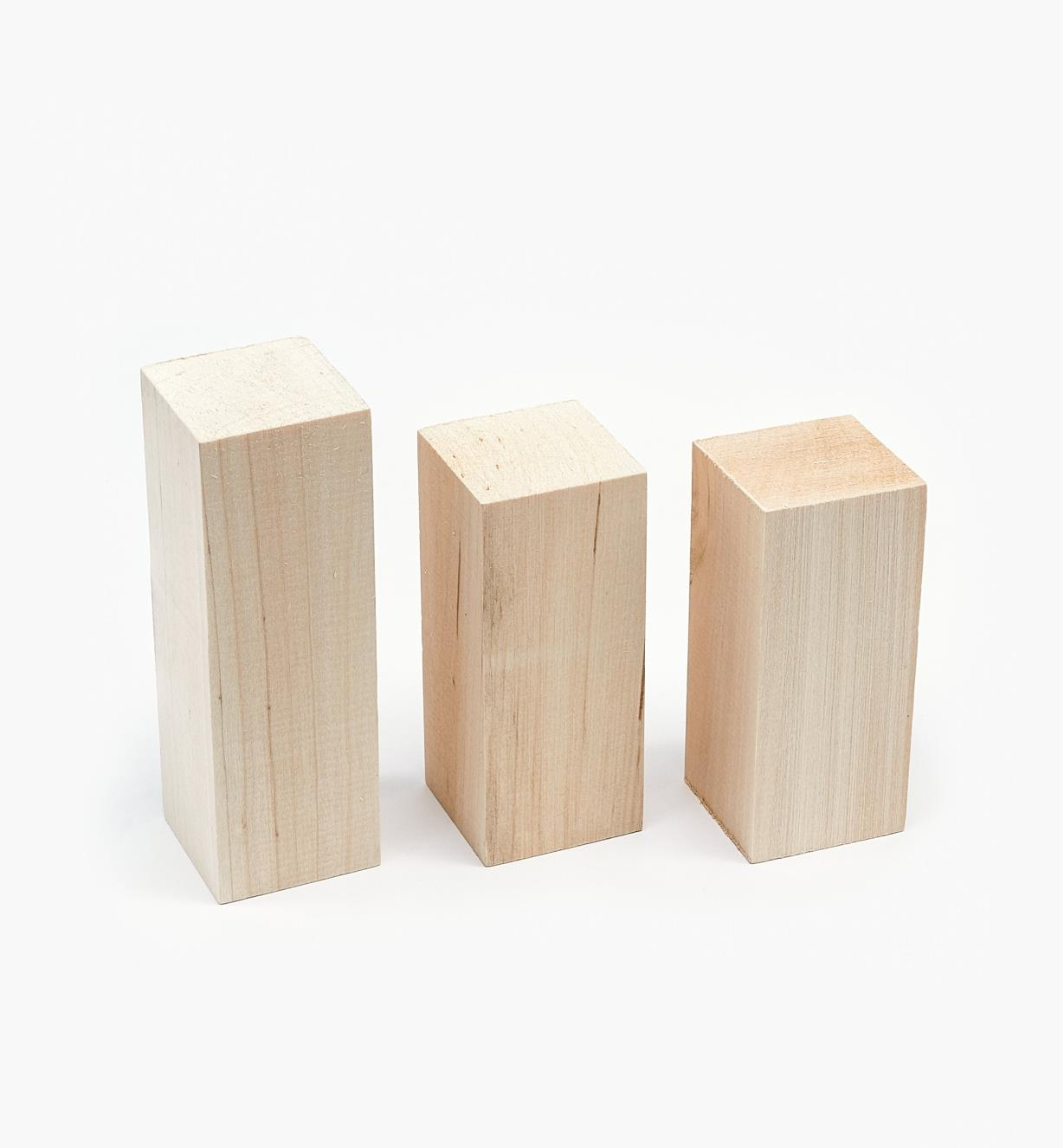 38N1220 - 3-pc. Basswood Blank Set