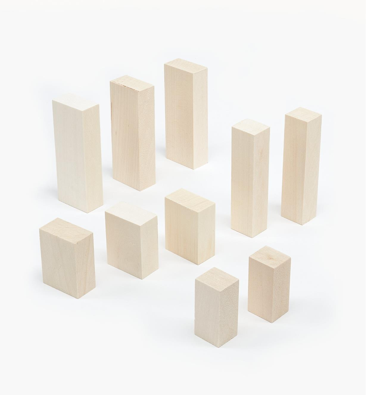 38N1221 - 10-pc. Basswood Blank Set