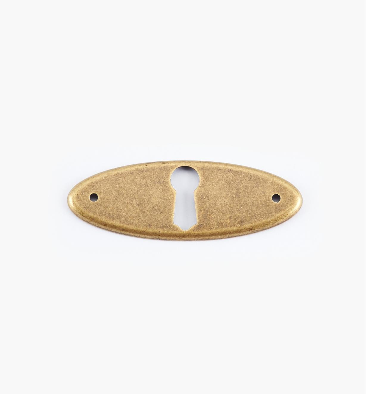 01X3020 - 65mm x 24mm Antique Brass Horizontal Escutcheon