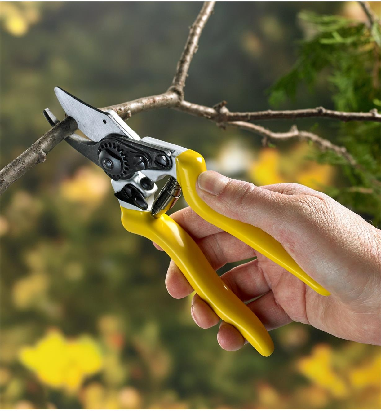 Cutting a twig with the high-quality bypass pruners