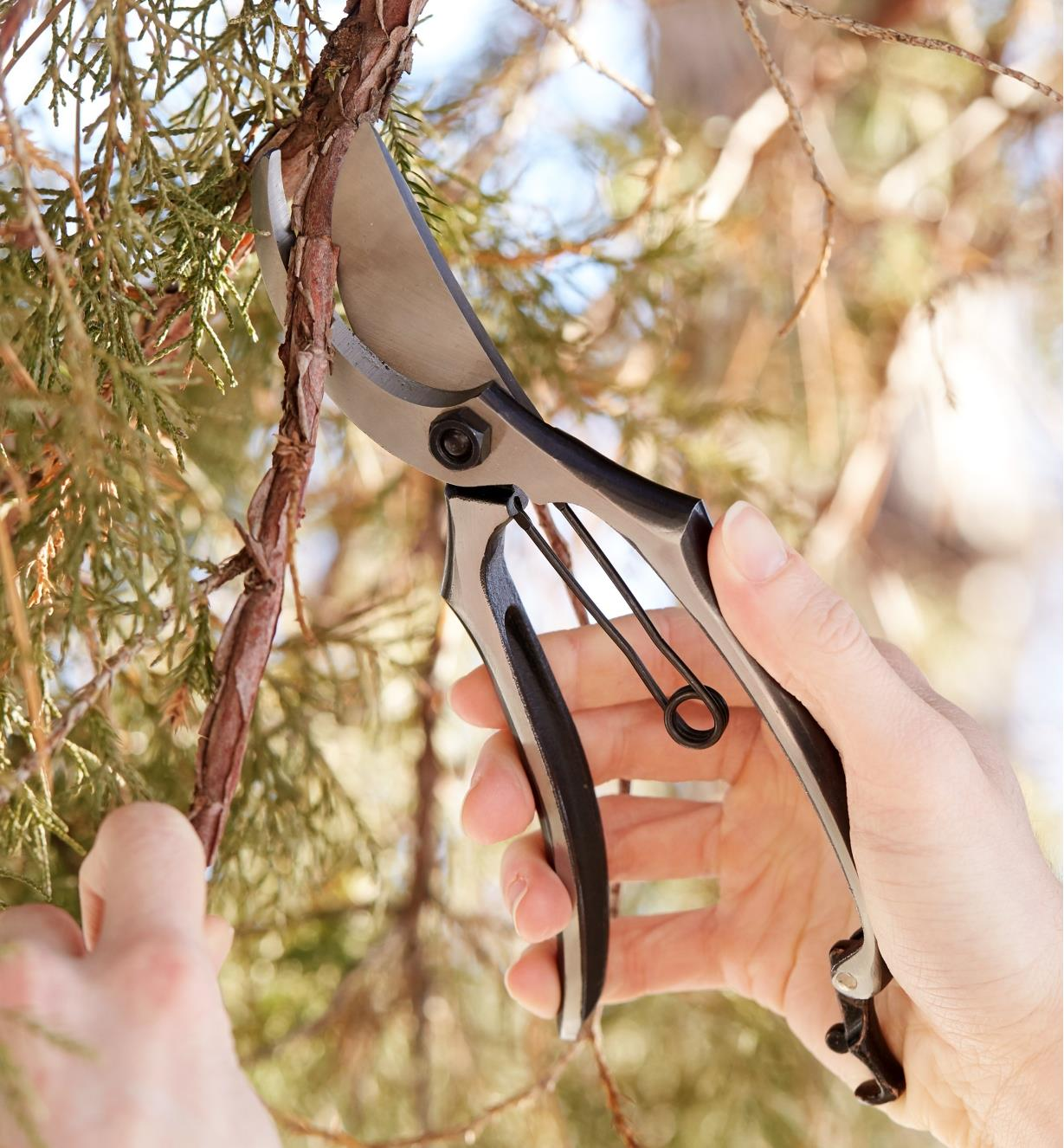 AB362 - All-Steel Bypass Pruner