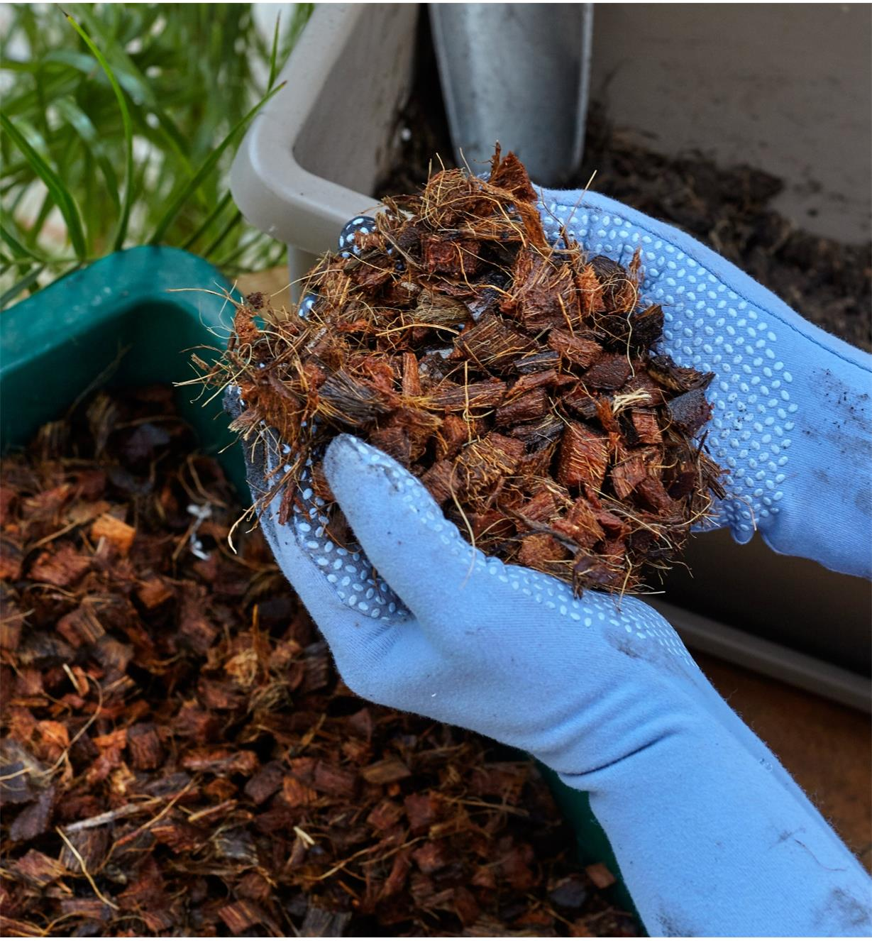 A gardener wearing gloves holds a handful of Coconut Husk Chips