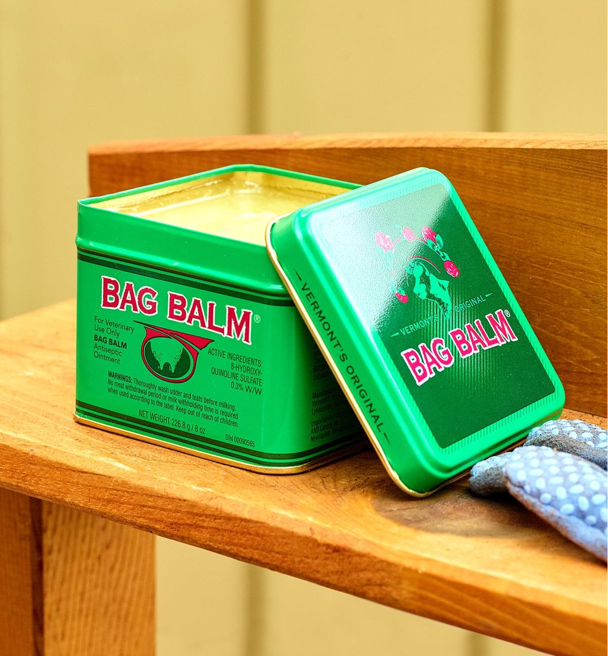 A tin of Bag Balm on a shelf
