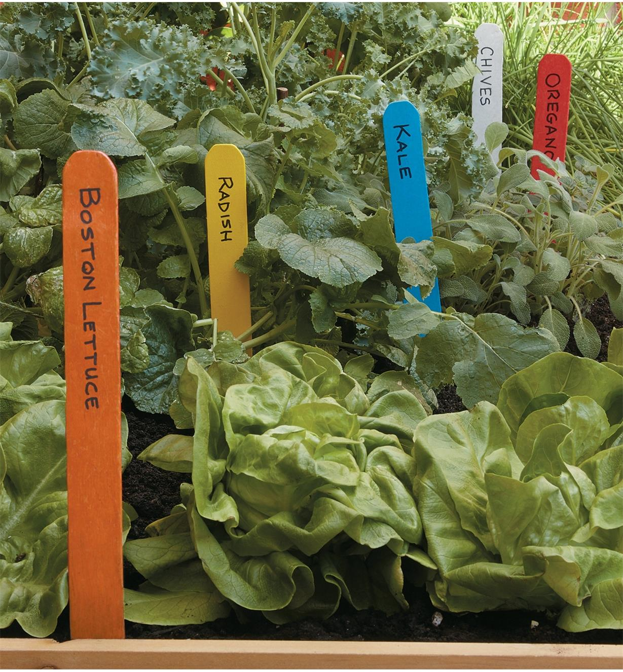 Different-colored markers with names of crops written on them inserted in a garden