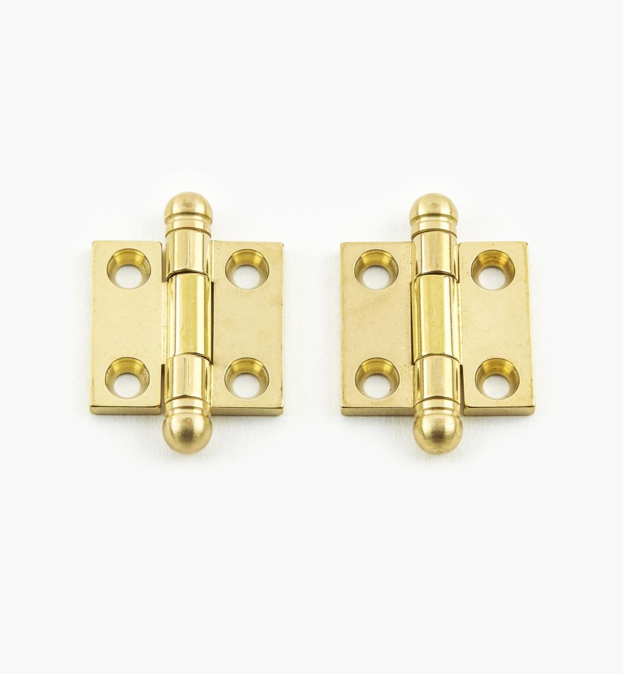 "01B0201 - 3/4"" x  13/16"" Ball-Tip Hinges, pr."