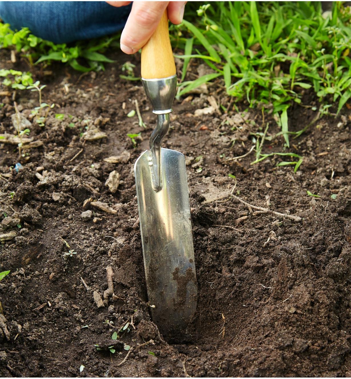 Digging in garden soil using the Lee Valley Premium Narrow Trowel