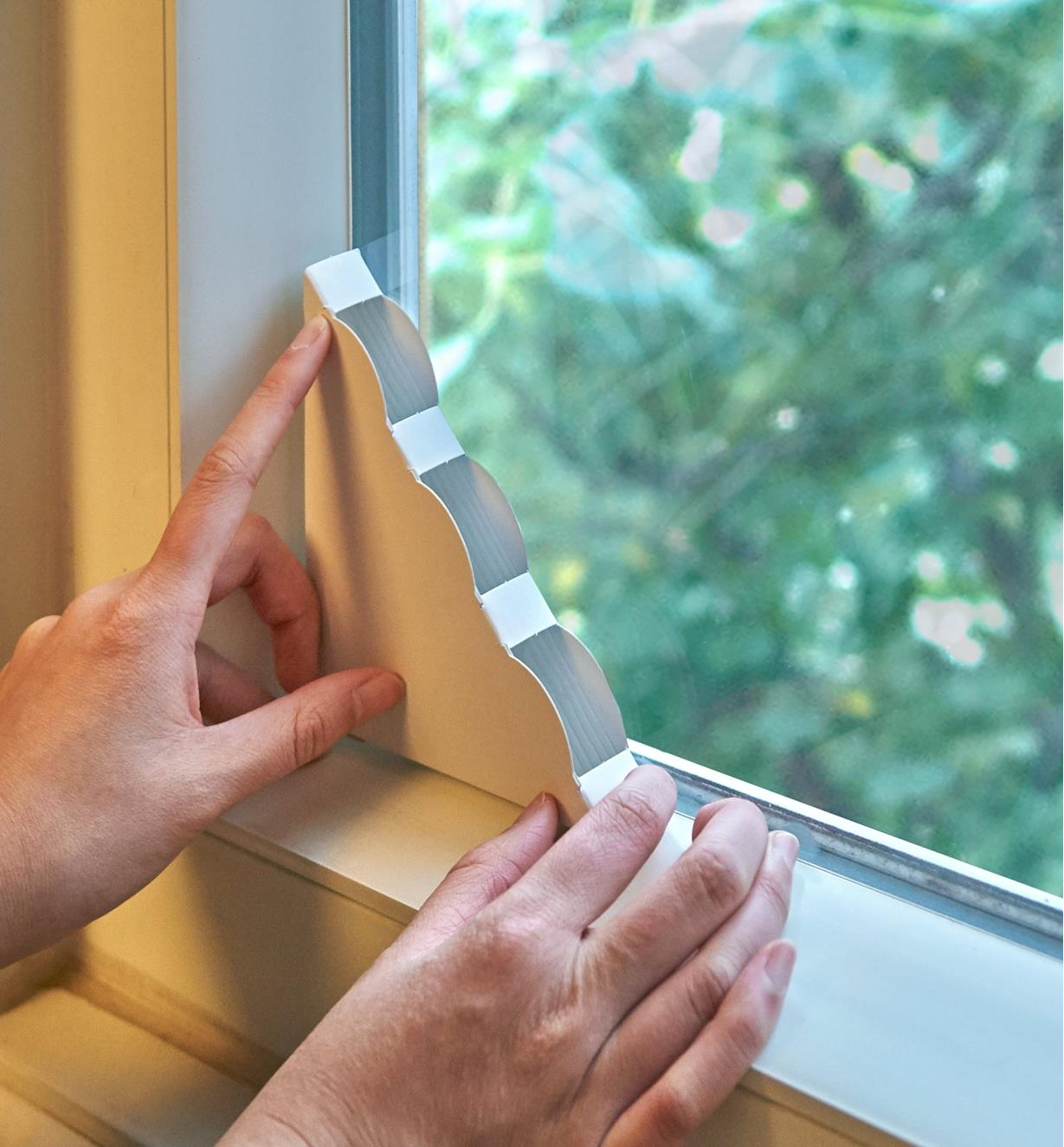 Placing a Window Fly Trap in the bottom corner of a window