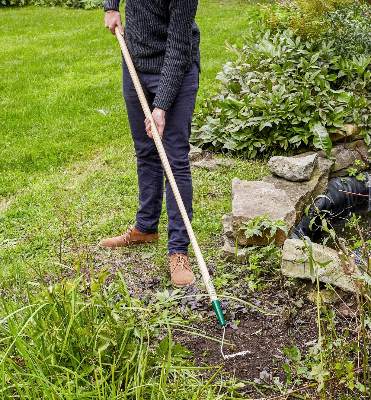 Using a Lee Valley Swoe to weed in a garden