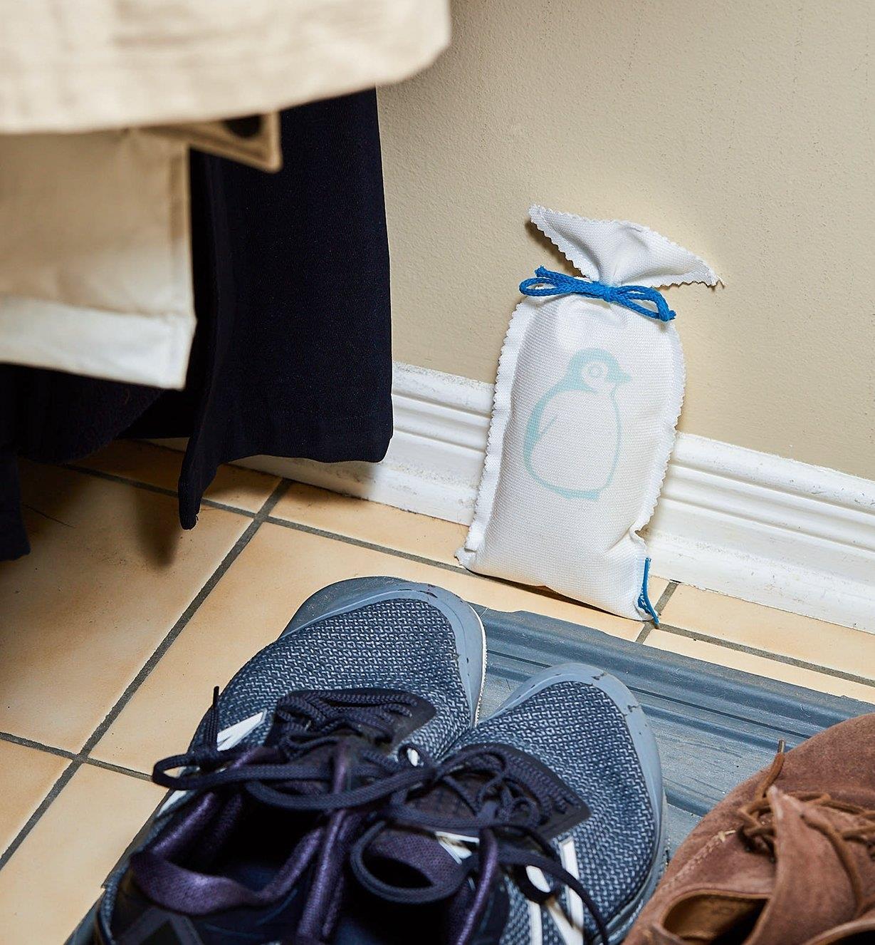 Dehumidifier bag placed near a shoe mat