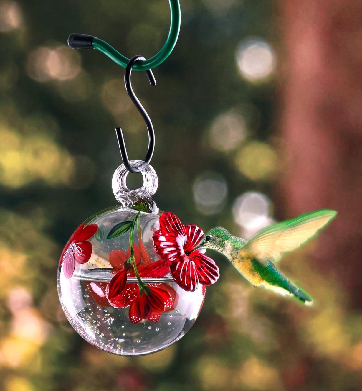 A hummingbird eats from the feeder