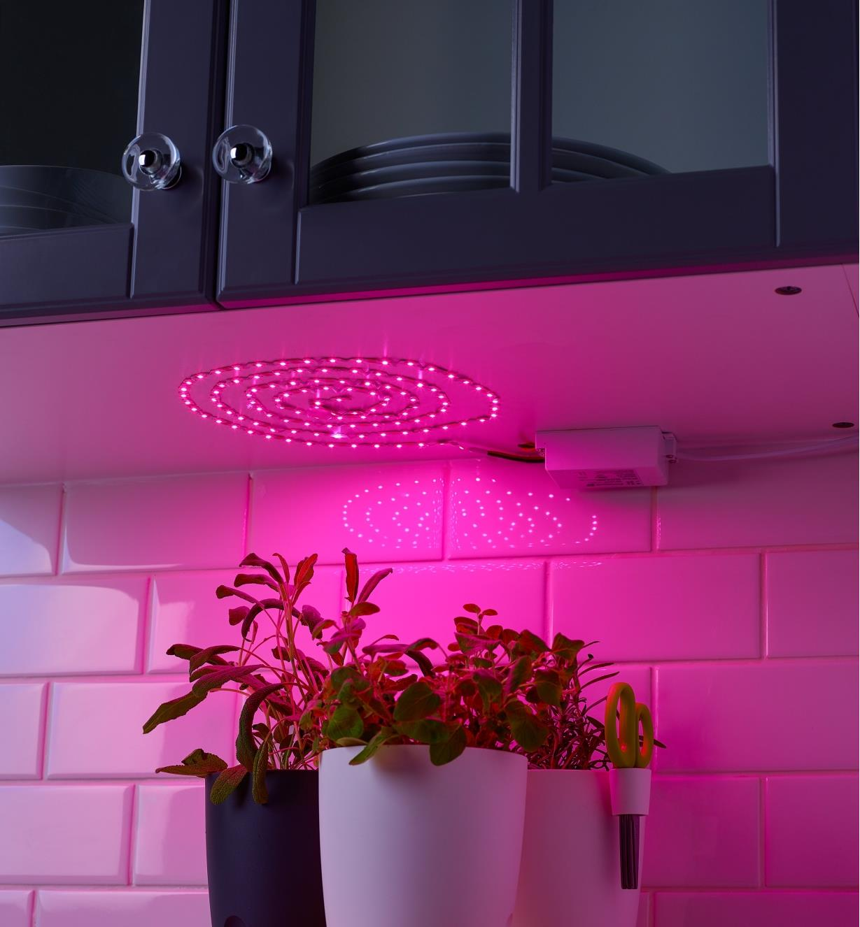 Example of GroFlex Growlight Tapelight mounted in a spiral shape under a cupboard