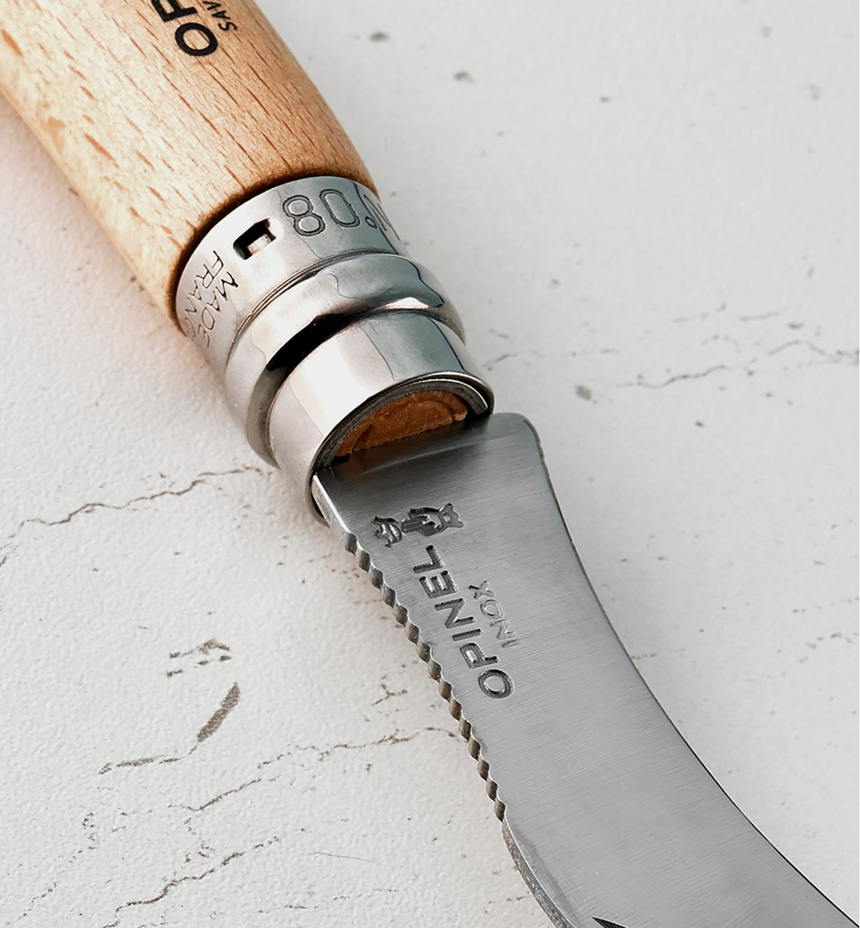 Close-up of the Mushroom Knife's toothed back