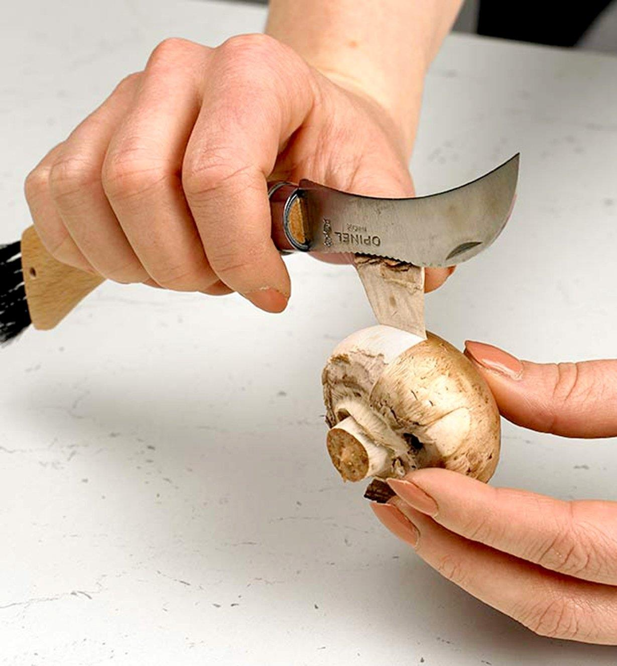 Using the back of the Mushroom Knife to remove the outer layer from a mushroom cap