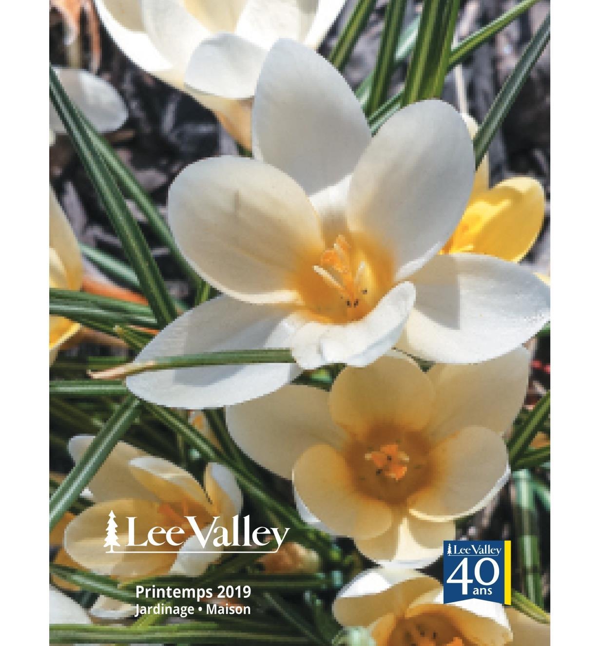 F0419G - Printemps 2019 Jardinage Maison)
