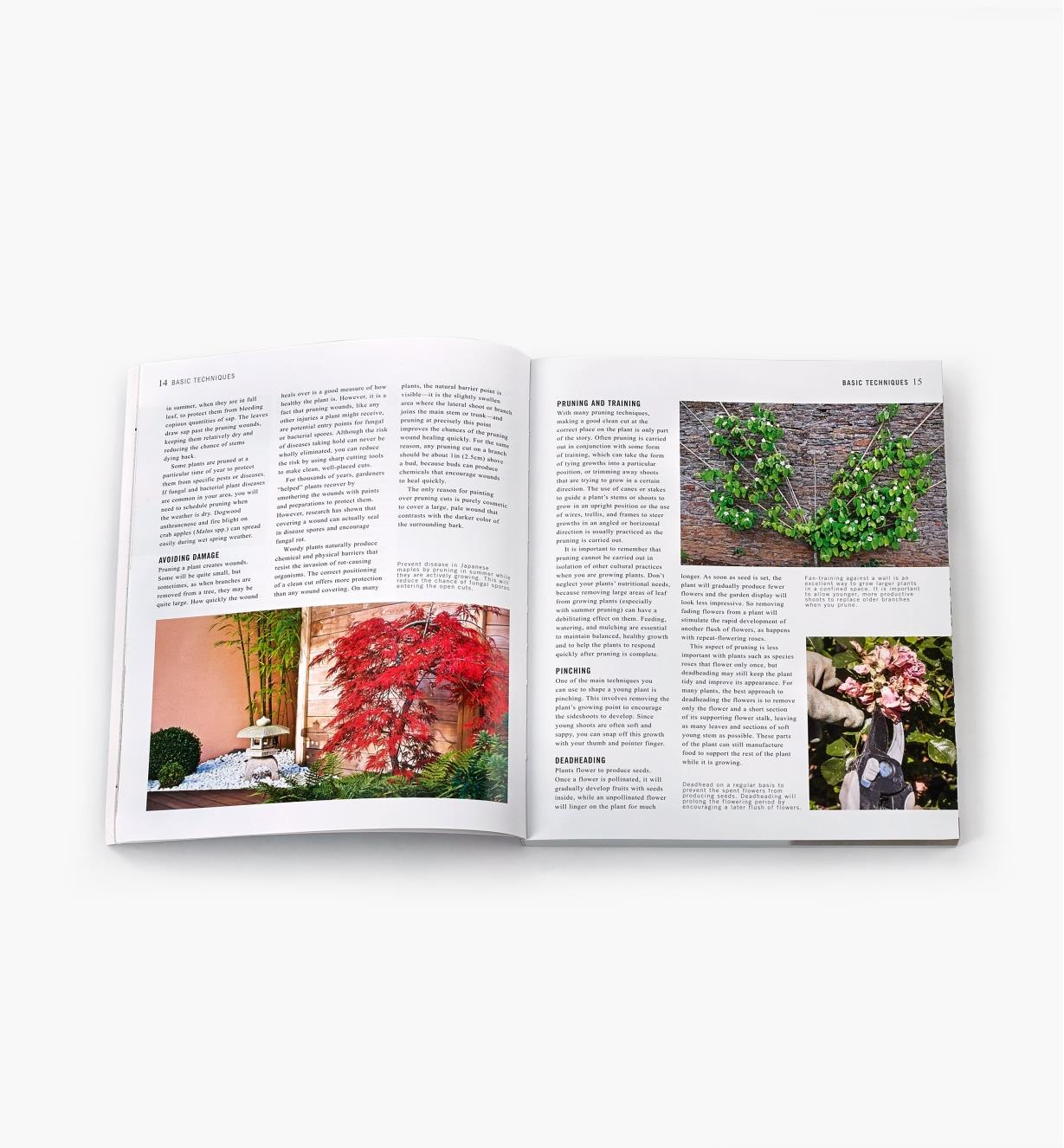 Two-page spread in Pruning Simplified with photos and text explaining how to shape plants, enhance their growth, promote flowering and avoid damage to plants when pruning
