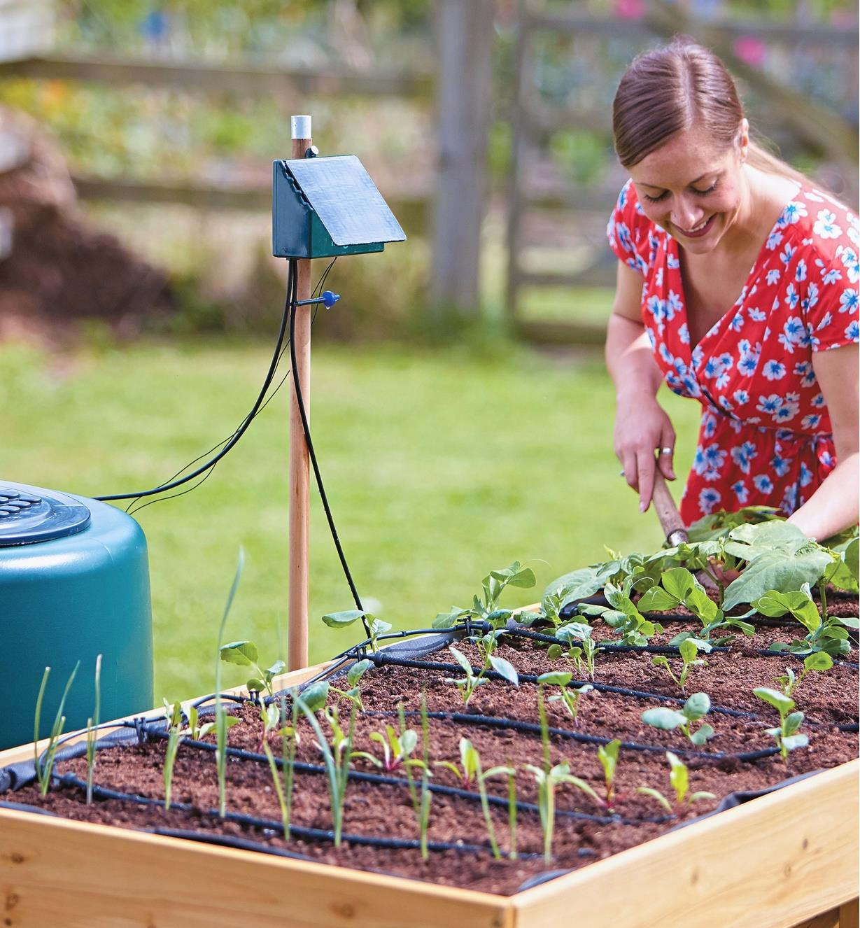 A woman tends a small raised garden being watered with the solar drip watering kit