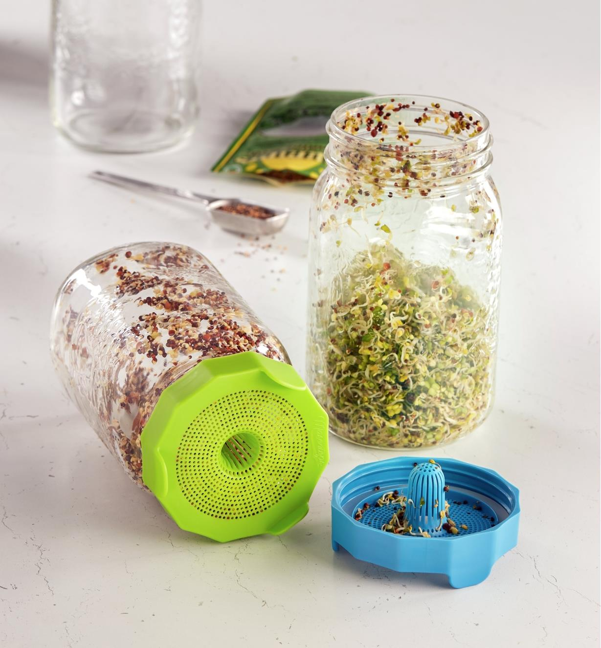Two preserving jars containing sprouts, one lying on its side with a bean screen sprouting lid threaded on, the other standing upright with the lid off