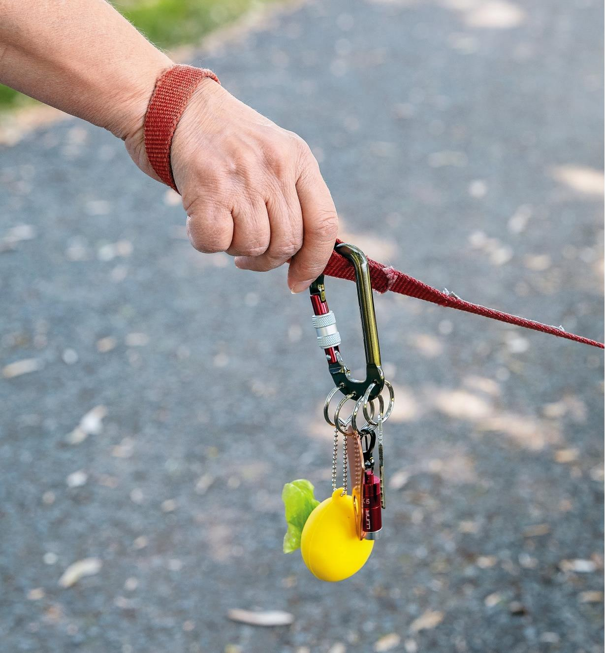 Split-Ring Locking Carabiner attaching a flashlight and a shopping bag pod to a dog leash handle