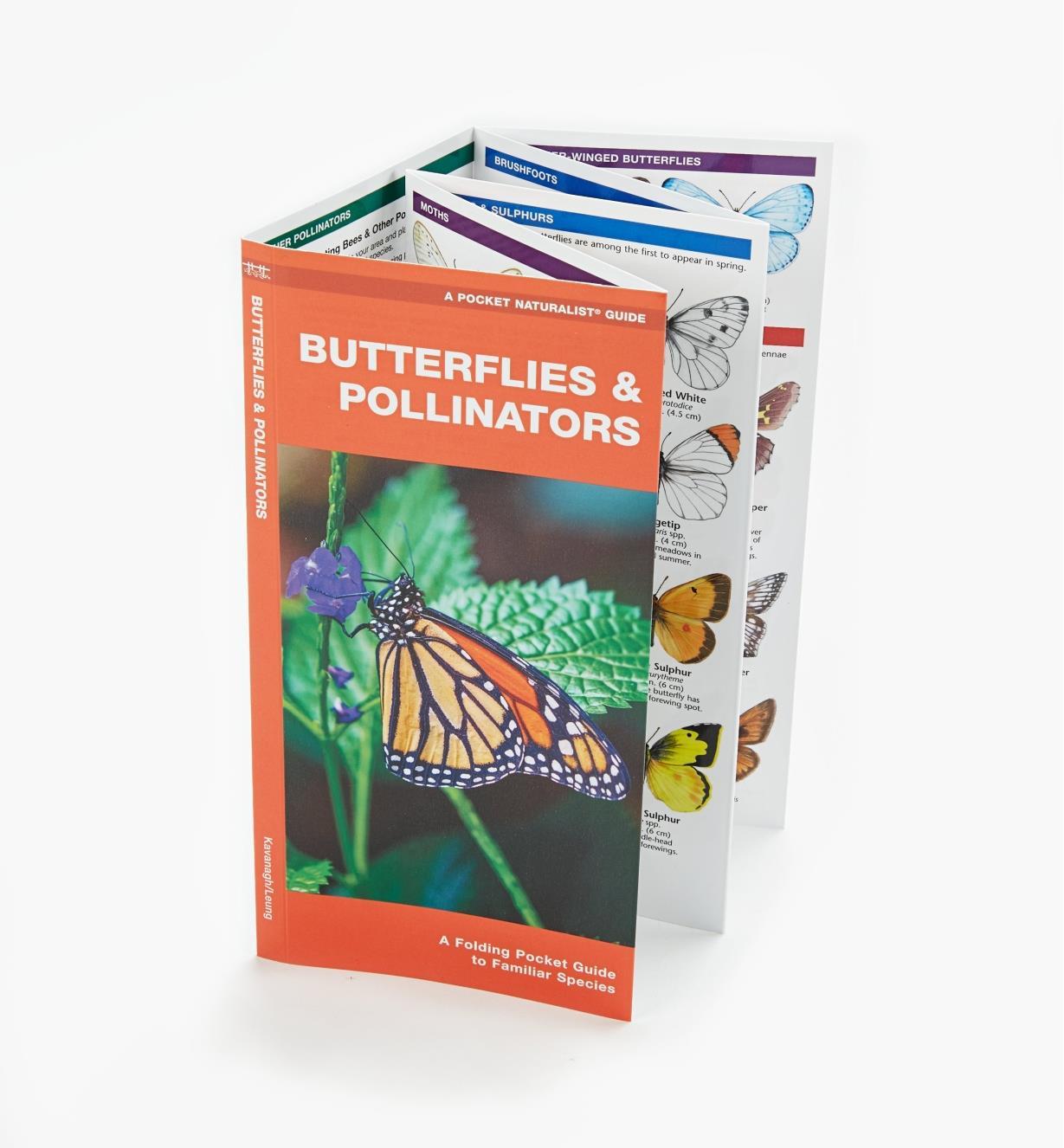 LA269 - Butterflies & Pollinators