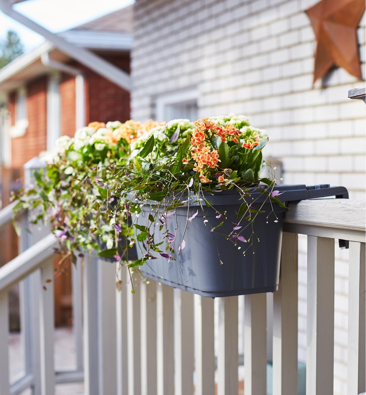 A Fence and Railing Planter mounted on a railing