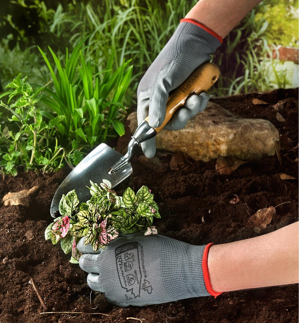 Personne portant des gants de travail légers pour repiquer une plante dans un jardin
