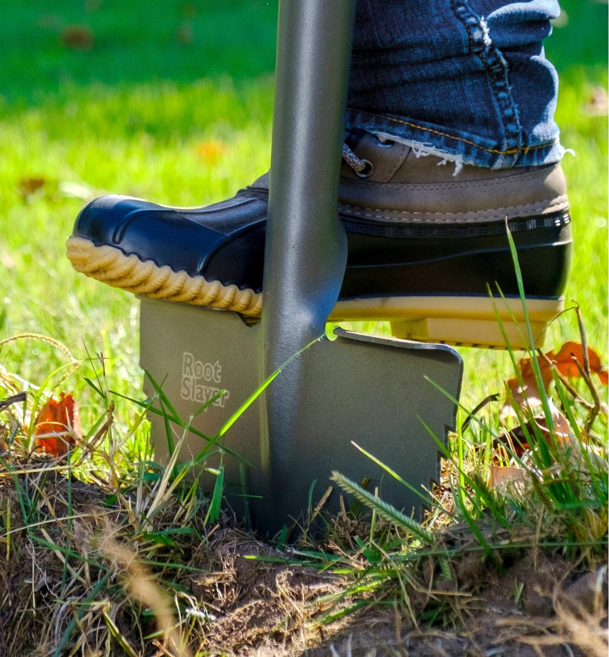 Driving a root-cutter lawn edger into the ground by pressing a foot against the blade's folded step