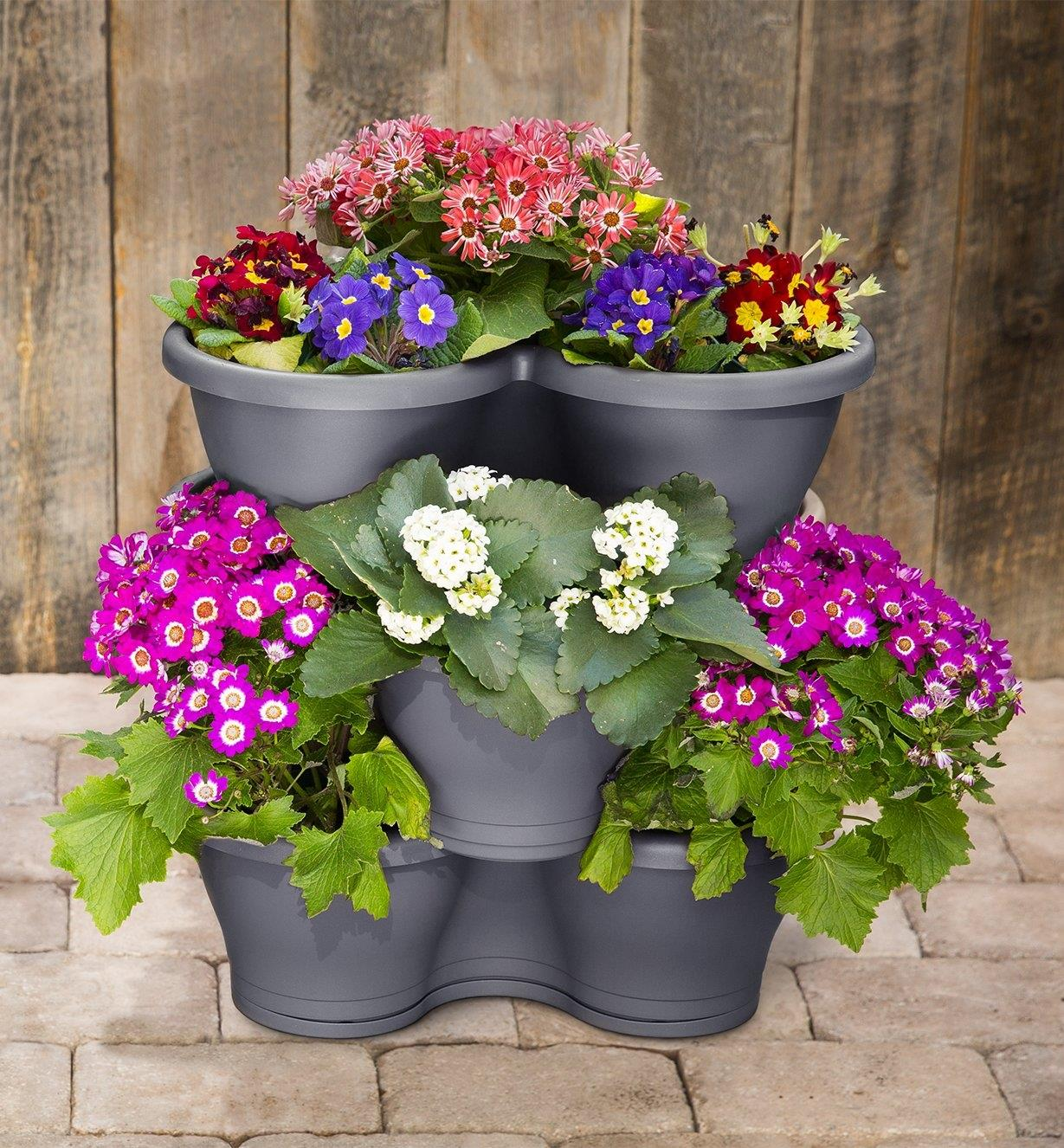 Elho planter pots planted with various flowers