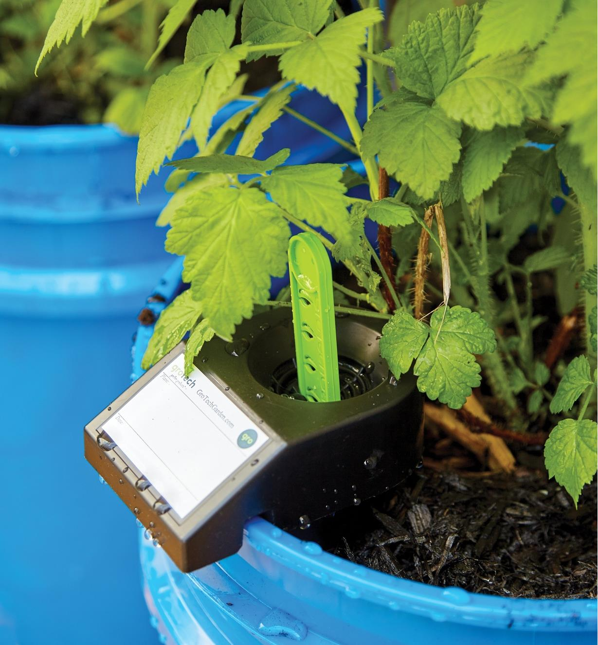 Green measuring stick protruding from the GroBucket Self-Watering Insert fill tube
