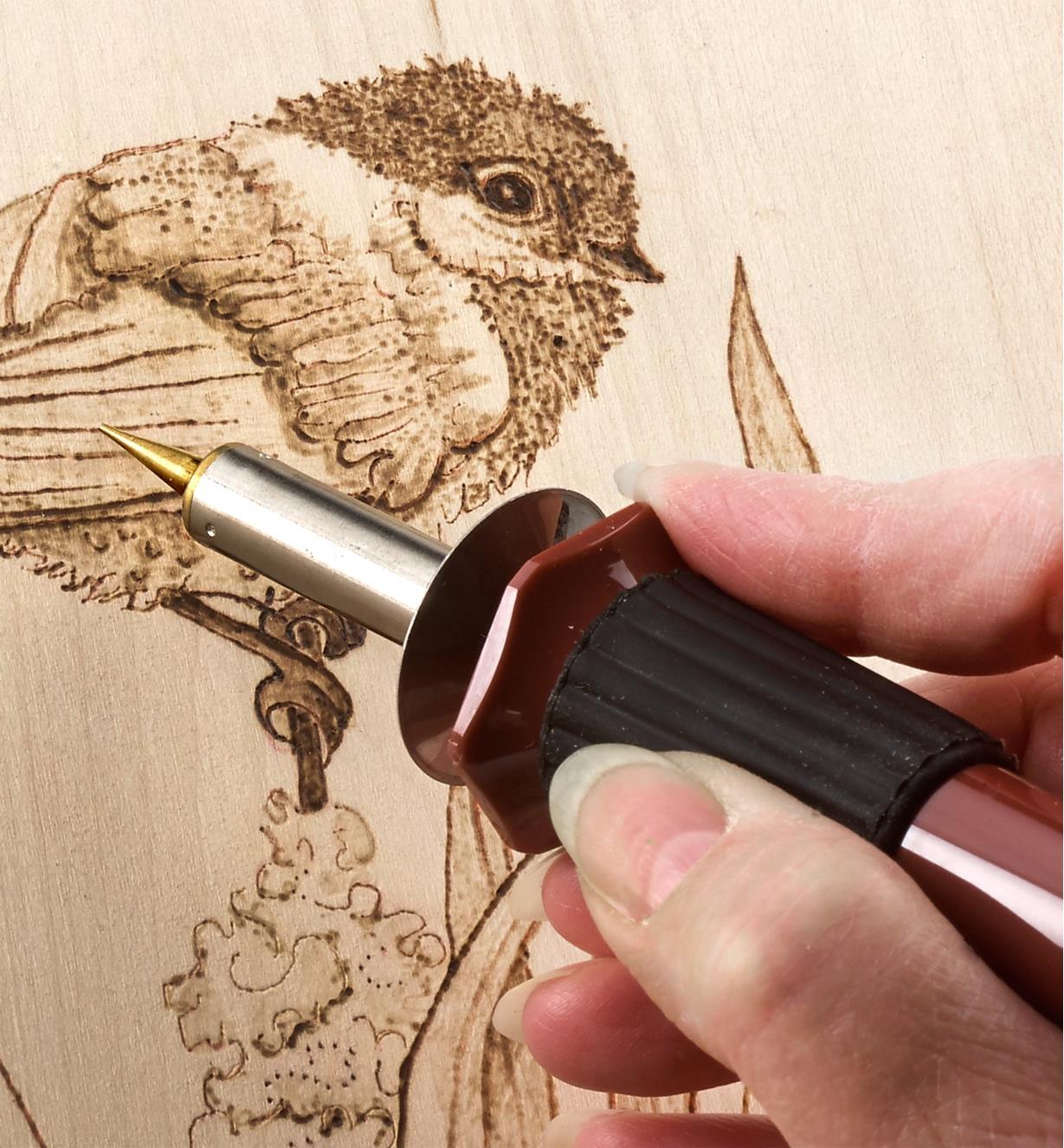 Burning a bird design into wood using the Multi-Function Heat Pen Set