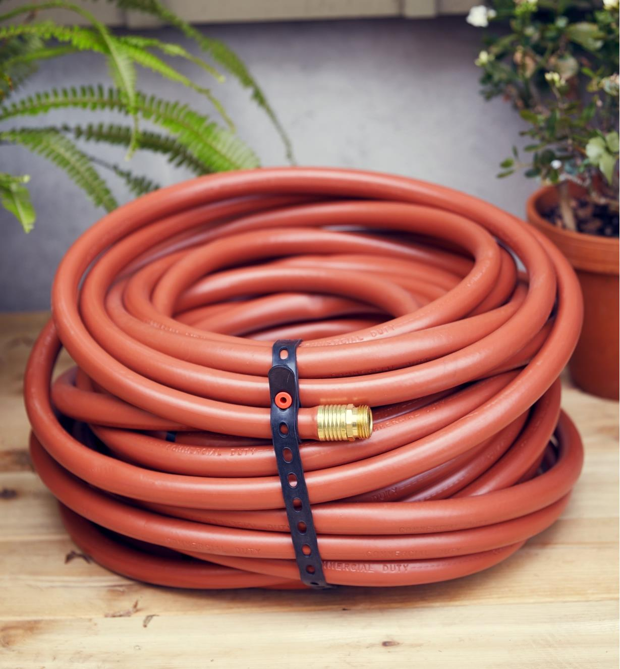 A coiled garden hose secured with a Wrap-N-Strap