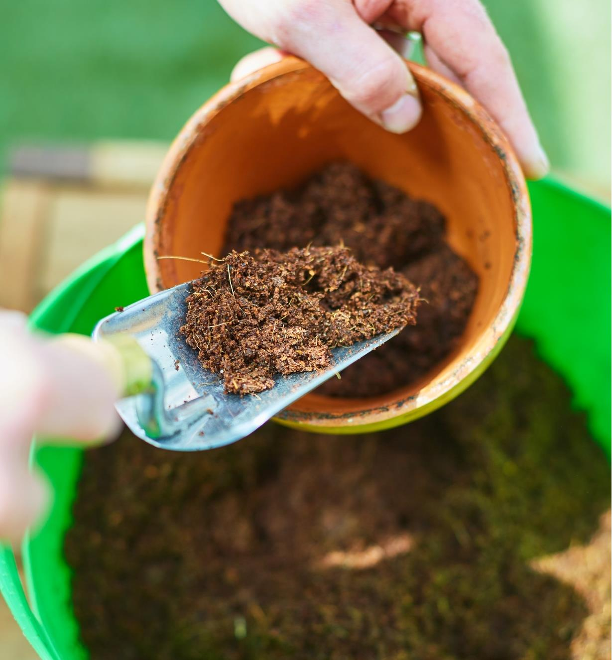 Scooping coir into a planting pot
